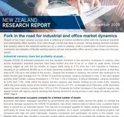 New Zealand Research Report - November 2020